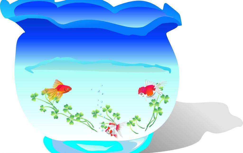 什么样的鱼缸