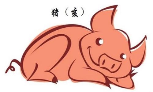 2019年猪年本命年要忌讳什么.jpg