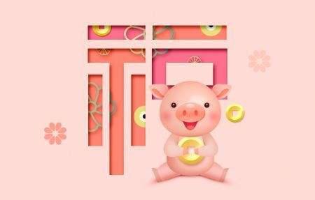 猪年本命年戴什么